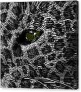 Leopard Within Canvas Print