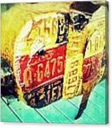 Licensed Pig Canvas Print