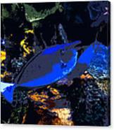 Life Among The Coral Canvas Print