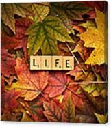 Life-autumn Canvas Print