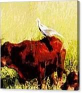 Life On The Farm V4 Canvas Print