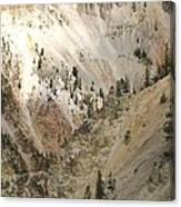 Light And Shadows In The Grand Canyon In Yellowstone Canvas Print