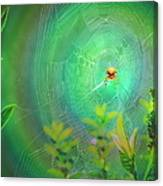 Lightning Spider Canvas Print