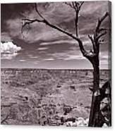 Lightning Striking Tree Of The Grand Canyon Canvas Print