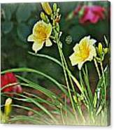 Lilies And Roses Canvas Print