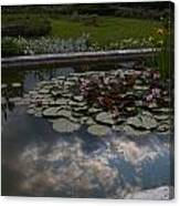 Lillies And Clouds Canvas Print
