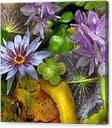 Lillies No. 6 Canvas Print