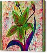Lily Abstraction Canvas Print
