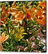 Lily Garden Bouquet  Canvas Print