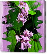 Lily Of The Valley - In The Pink #1 Canvas Print
