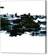 Lily Pads On White Water Canvas Print