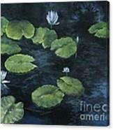 Lilypond Canvas Print