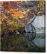 Lincoln Woods Autumn Boulders Canvas Print