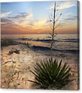 Linger By The Sea Canvas Print