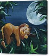 Lion Sleeps Tonight Canvas Print