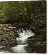 Little Carp River Falls 3 Canvas Print