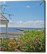 Little Harbor Tampa Bay Canvas Print
