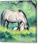 Little Paint II Canvas Print