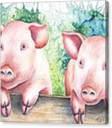 Little Piggies Canvas Print