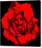 Little Red Flower ... Canvas Print