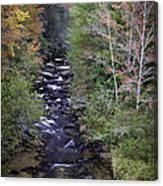 Little River - North Carolina Autumn Scene Canvas Print