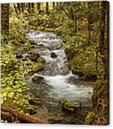 Little Zig Zag Stream Canvas Print
