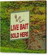 Live Bait Sign Canvas Print
