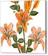 Living Sculpture I Peach Lily Flowers and Buds Canvas Print
