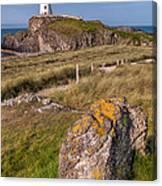 Llanddwyn Rock Canvas Print