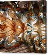 Lobster Female Sex Organs Canvas Print