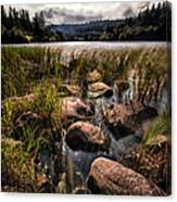 Loch Ard From The Reed Beds Canvas Print