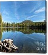 Log In The Lake Canvas Print