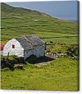 Lone Farmhouse On Mizen Head In West Canvas Print