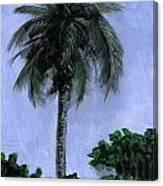 Lone Palm Canvas Print