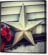Lone Star Texas Canvas Print