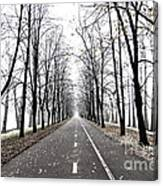 Long Way Canvas Print