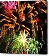 Longwood Fireworks Canvas Print