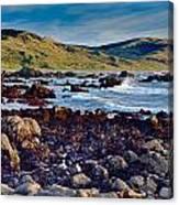 Lost Coast In Winter Canvas Print
