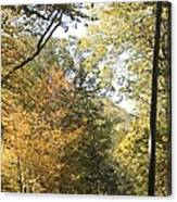 Lost In The Fall Canvas Print