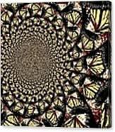 Lotsa Butterflies  Canvas Print