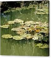 Lotus Pond 2 Canvas Print