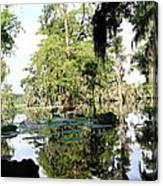 Louisiana Reflections Canvas Print