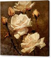 Love Letter II Canvas Print