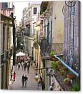 Lovely Havana Canvas Print