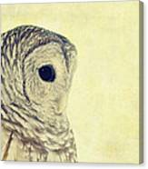 Lovely Lucy Barred Owl Canvas Print