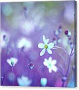 Lovestruck In Purple Canvas Print