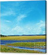 Low Country Marsh Canvas Print
