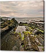 Low Tide Rocks Canvas Print