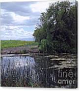 Lower Klamath Wildlife Refuge Canvas Print