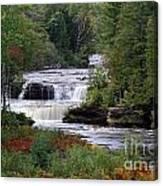 Lower Tahquamenon Falls Area Canvas Print